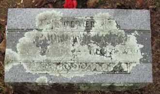 "MORRIS AVEY, MARTHA JANE ""SIS"" - Baxter County, Arkansas | MARTHA JANE ""SIS"" MORRIS AVEY - Arkansas Gravestone Photos"