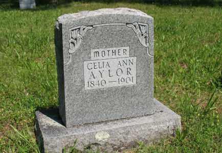 AYLOR, CELIA - Baxter County, Arkansas | CELIA AYLOR - Arkansas Gravestone Photos