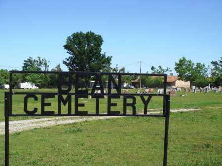 *, BEAN CEMETERY OVERVIEW - Baxter County, Arkansas | BEAN CEMETERY OVERVIEW * - Arkansas Gravestone Photos