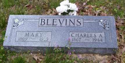 BLEVINS, CHARLES A - Baxter County, Arkansas | CHARLES A BLEVINS - Arkansas Gravestone Photos