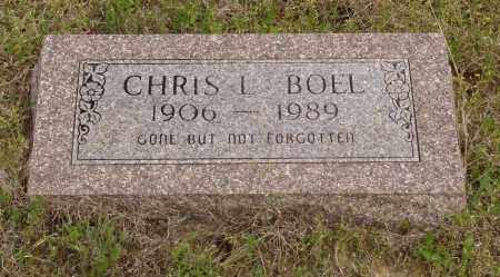 BOEL, CHRIS L - Baxter County, Arkansas | CHRIS L BOEL - Arkansas Gravestone Photos