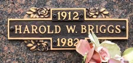 BRIGGS, HAROLD W. - Baxter County, Arkansas   HAROLD W. BRIGGS - Arkansas Gravestone Photos