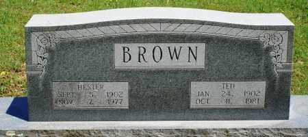 BROWN, HESTER - Baxter County, Arkansas | HESTER BROWN - Arkansas Gravestone Photos