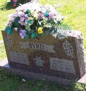 BYRD, FREDDIE E. - Baxter County, Arkansas | FREDDIE E. BYRD - Arkansas Gravestone Photos