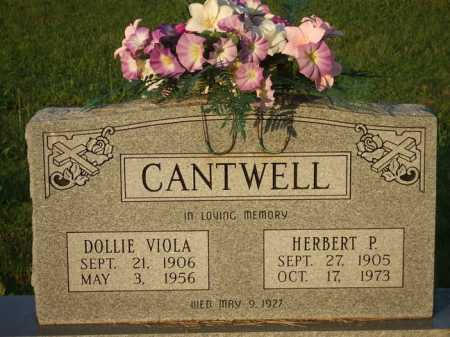 CANTWELL, DOLLIE VIOLA - Baxter County, Arkansas | DOLLIE VIOLA CANTWELL - Arkansas Gravestone Photos