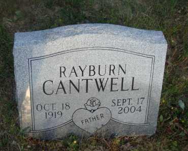 CANTWELL, RAYBURN - Baxter County, Arkansas | RAYBURN CANTWELL - Arkansas Gravestone Photos
