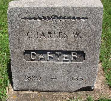 CARTER, CHARLES W. - Baxter County, Arkansas | CHARLES W. CARTER - Arkansas Gravestone Photos