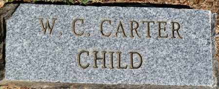 CARTER, W C - Baxter County, Arkansas | W C CARTER - Arkansas Gravestone Photos