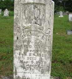 CASEY, CYNTHIA - Baxter County, Arkansas   CYNTHIA CASEY - Arkansas Gravestone Photos