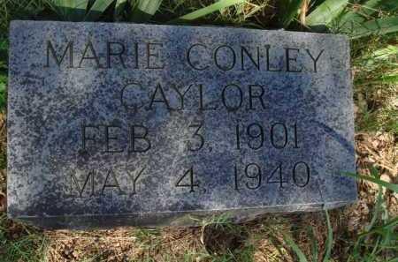 CAYLOR, MARIE - Baxter County, Arkansas | MARIE CAYLOR - Arkansas Gravestone Photos