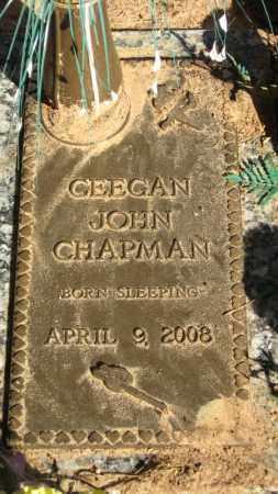 CHAPMAN, CEEGAN JOHN - Baxter County, Arkansas | CEEGAN JOHN CHAPMAN - Arkansas Gravestone Photos