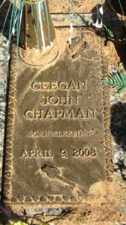 CHAPMAN, CEEGAN JOHN - Baxter County, Arkansas | CEEGAN JOHN CHAPMAN - Arkansas Gravestone Photos
