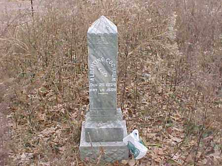 COCKRUM, ALBERTINE - Baxter County, Arkansas | ALBERTINE COCKRUM - Arkansas Gravestone Photos