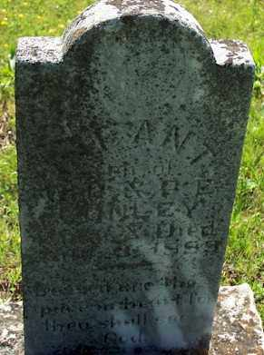 CONLEY, INFANT SON - Baxter County, Arkansas | INFANT SON CONLEY - Arkansas Gravestone Photos
