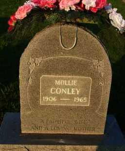 CONLEY, MOLLIE CATHERINE - Baxter County, Arkansas   MOLLIE CATHERINE CONLEY - Arkansas Gravestone Photos