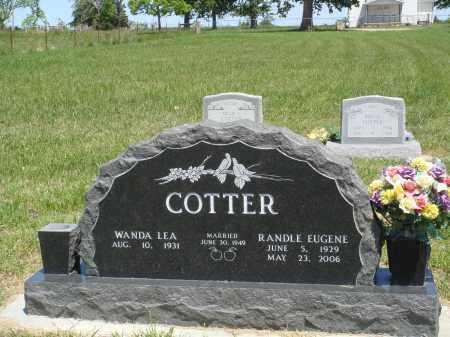 COTTER, RANDLE EUGENE - Baxter County, Arkansas | RANDLE EUGENE COTTER - Arkansas Gravestone Photos