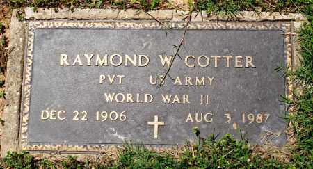 COTTER (VETERAN WWII), RAYMOND W - Baxter County, Arkansas | RAYMOND W COTTER (VETERAN WWII) - Arkansas Gravestone Photos