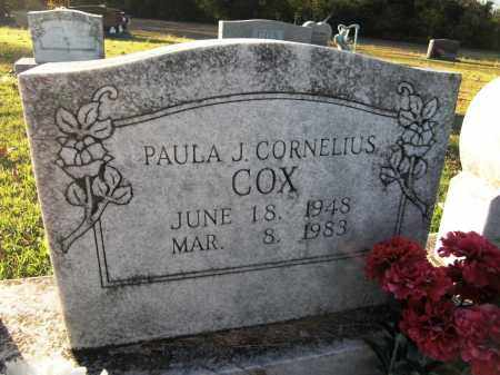 COX, PAULA - Baxter County, Arkansas | PAULA COX - Arkansas Gravestone Photos
