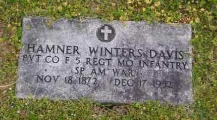 DAVIS (VETERAN SAW), HAMNER WINTERS - Baxter County, Arkansas | HAMNER WINTERS DAVIS (VETERAN SAW) - Arkansas Gravestone Photos