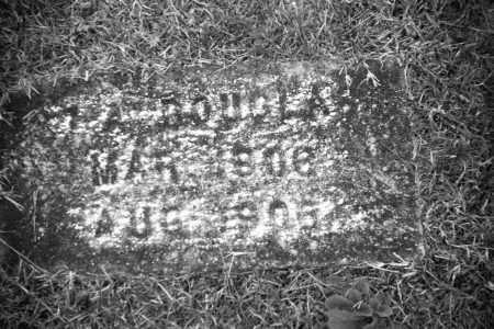 DOUGLAS (TWIN), IDONA - Baxter County, Arkansas   IDONA DOUGLAS (TWIN) - Arkansas Gravestone Photos