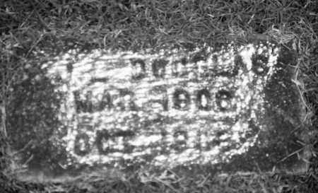 DOUGLAS (TWIN), J. L. - Baxter County, Arkansas | J. L. DOUGLAS (TWIN) - Arkansas Gravestone Photos