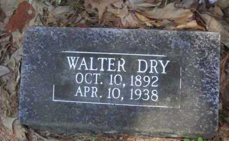 DRY, WALTER - Baxter County, Arkansas | WALTER DRY - Arkansas Gravestone Photos