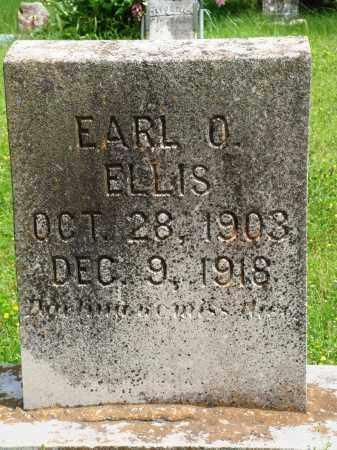 ELLIS, EARL O - Baxter County, Arkansas | EARL O ELLIS - Arkansas Gravestone Photos