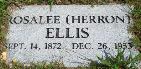 HERRON ELLIS, ROSALEE - Baxter County, Arkansas | ROSALEE HERRON ELLIS - Arkansas Gravestone Photos