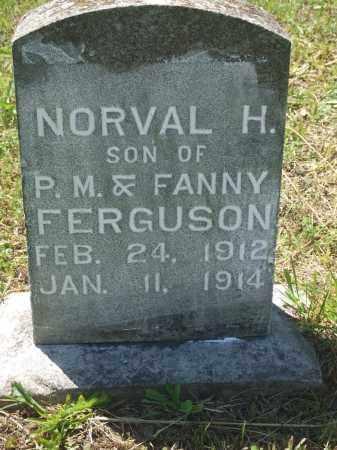 FERGUSON, NORVAL H - Baxter County, Arkansas | NORVAL H FERGUSON - Arkansas Gravestone Photos