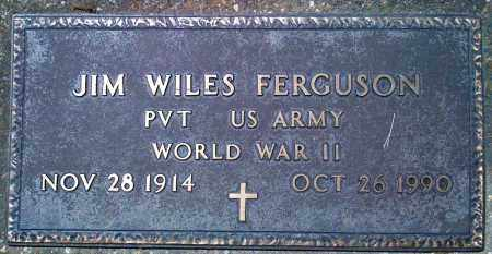 FERGUSON (VETERAN WWII), JIM WILES - Baxter County, Arkansas | JIM WILES FERGUSON (VETERAN WWII) - Arkansas Gravestone Photos