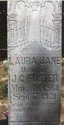 "PARKS FOSTER, LAURA JANE ""JANIE"" - Baxter County, Arkansas 