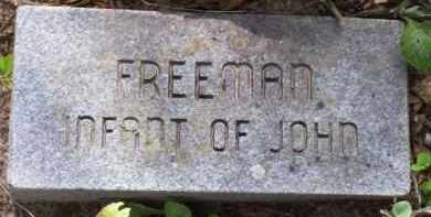 FREEMAN, INFANT - Baxter County, Arkansas | INFANT FREEMAN - Arkansas Gravestone Photos
