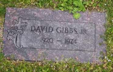 GIBBS, JR, DAVID - Baxter County, Arkansas   DAVID GIBBS, JR - Arkansas Gravestone Photos