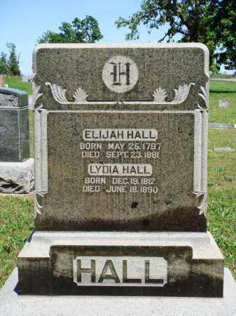 HALL, LYDIA - Baxter County, Arkansas | LYDIA HALL - Arkansas Gravestone Photos