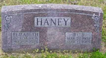 HANEY, BOB - Baxter County, Arkansas   BOB HANEY - Arkansas Gravestone Photos