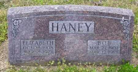 HANEY, ELIZABETH - Baxter County, Arkansas | ELIZABETH HANEY - Arkansas Gravestone Photos