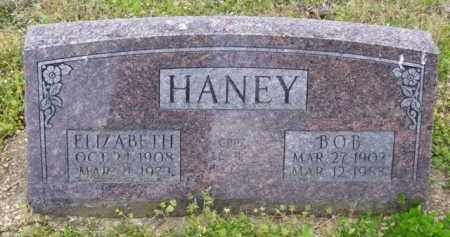 HELM HANEY, ELIZABETH - Baxter County, Arkansas | ELIZABETH HELM HANEY - Arkansas Gravestone Photos