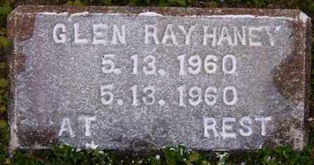 HANEY, GLEN RAY - Baxter County, Arkansas | GLEN RAY HANEY - Arkansas Gravestone Photos