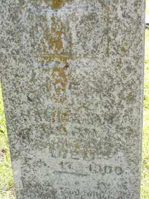 HARGRAVE, ROBERT - Baxter County, Arkansas | ROBERT HARGRAVE - Arkansas Gravestone Photos