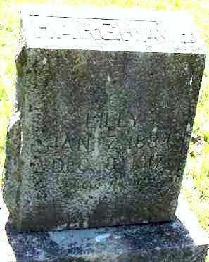 HARGRAVE, LILLY - Baxter County, Arkansas | LILLY HARGRAVE - Arkansas Gravestone Photos