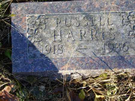 HARRIS, RUSSELL - Baxter County, Arkansas   RUSSELL HARRIS - Arkansas Gravestone Photos
