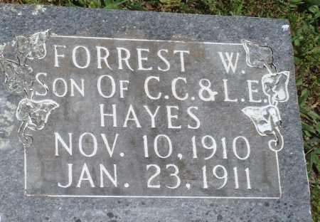 HAYES, FORREST W - Baxter County, Arkansas | FORREST W HAYES - Arkansas Gravestone Photos