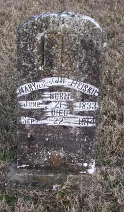 HEISKILL, MARY - Baxter County, Arkansas | MARY HEISKILL - Arkansas Gravestone Photos