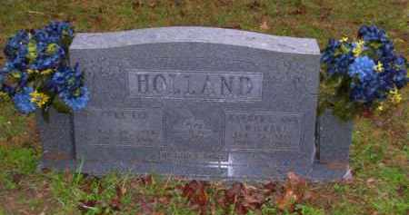 HOLLAND, BARBARA ANN - Baxter County, Arkansas | BARBARA ANN HOLLAND - Arkansas Gravestone Photos