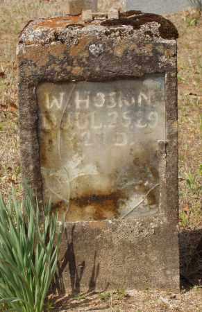 HOSKINS, W - Baxter County, Arkansas | W HOSKINS - Arkansas Gravestone Photos