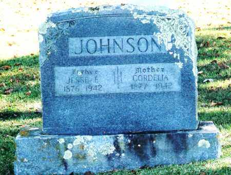 JOHNSON, JESSE E. - Baxter County, Arkansas | JESSE E. JOHNSON - Arkansas Gravestone Photos