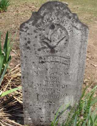 KING, NELLIE - Baxter County, Arkansas   NELLIE KING - Arkansas Gravestone Photos