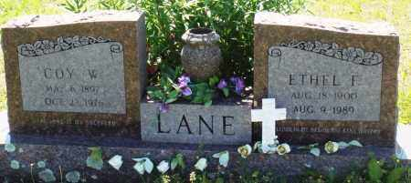 LANE, ETHEL F - Baxter County, Arkansas | ETHEL F LANE - Arkansas Gravestone Photos