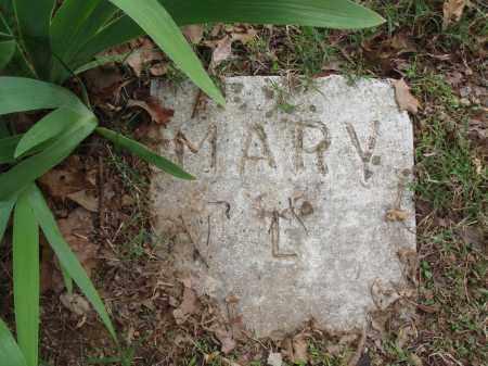 LANGSTON, MARY - Baxter County, Arkansas | MARY LANGSTON - Arkansas Gravestone Photos