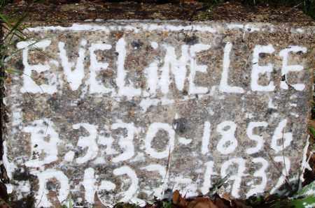 LEE, EVELINE - Baxter County, Arkansas | EVELINE LEE - Arkansas Gravestone Photos